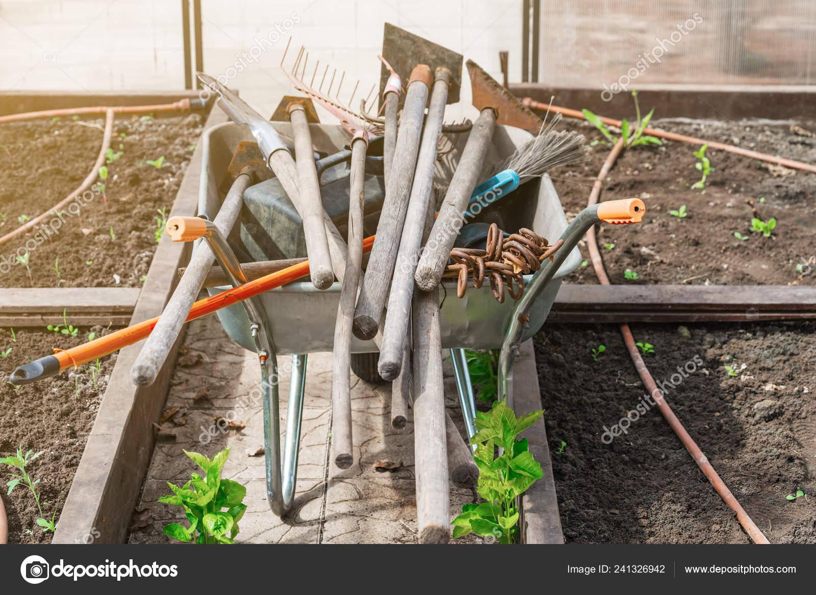 Set Used Old Dirty Garden Tools Beds Greenhouse Rake Shovels