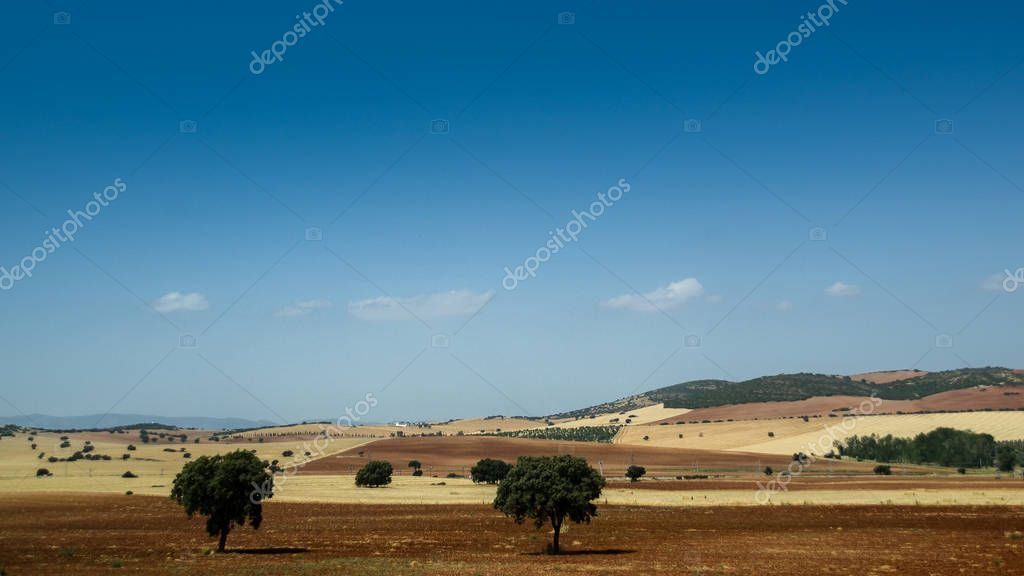 Andalucia, Spain rural landscape with agricultural fields