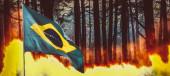 Zuřící lesní oheň s brazilskou vlajkou na popředí