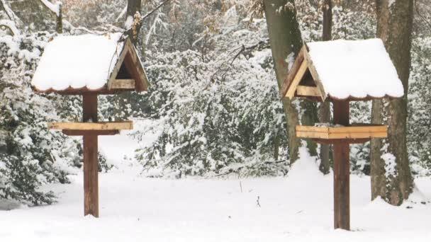 dvě krmítka v parku v zimě zasněžený den