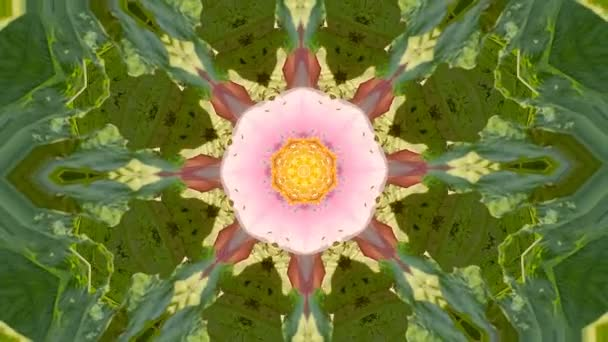 Abstract dynamic geometric kaleidoscope flower pattern background