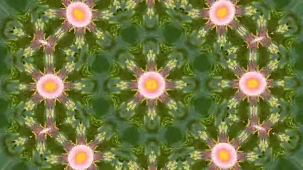 Abstraktní pozadí dynamické geometrické kaleidoskop vzor květ