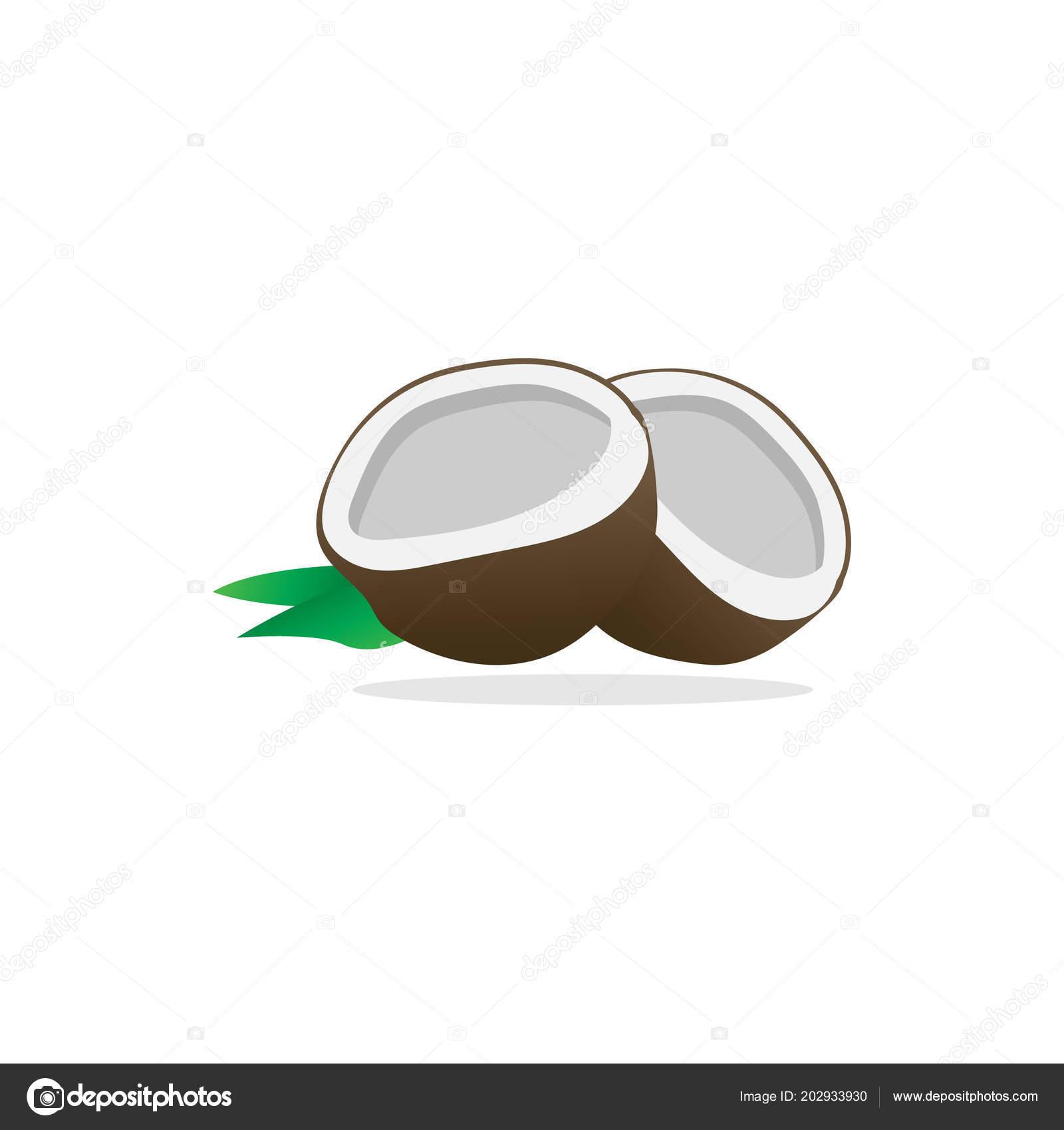 simple half coconut vector template design eps10 vetor de stock