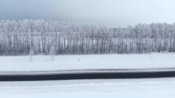 Zimní sezóna. Sněžný les, letecký záběr. Dech beroucí přírodní krajina, zamrzlé lesy a tmavá polní cesta se sněhem.