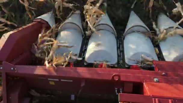Modern össze harvester robot gyűjteni búza