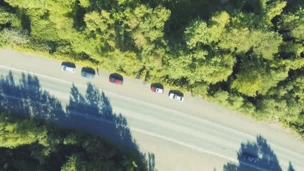 Cars highway traffic in forest, aerial scenic
