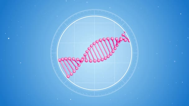 Rotating pink DNA molecule. Located at the center. Futuristic view into the microscope. 3D rendered animation. Blue digital background. Genetics concept. Concept of medicine or science. 4K footage