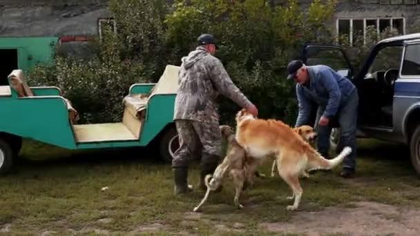 Cacciatori di sedersi cani in auto