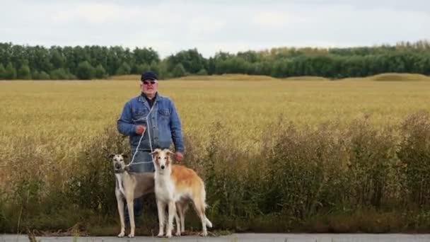 Hunter si leva in piedi con i cani in agguato