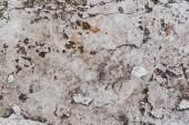 Detailní pohled staré šedá omšelé zdi texturou pozadí