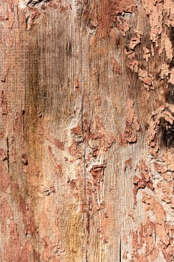 close-up view of old scratched weathered wooden background