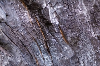 close-up view of old dark burned wooden background