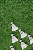 pohled shora bílé opeřené pro hraní badmintonu na zeleném trávníku