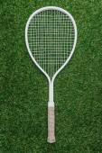 pohled shora na bílé tenisovou raketu leží na zelené trávě