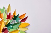flat lay with colorful handmade paper foliage arranged on white background