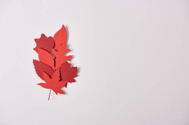 top view of red papercrafted leaves arranged on white background