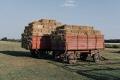 Fotografie rural scene with two hindcarriage full of stacked hay at farm in countryside