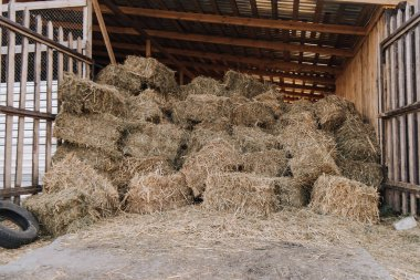 barn with stacked hay at farm in countryside