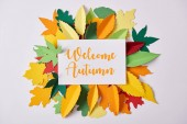 Fotografie flat lay with paper with welcome autumn inspiration and colorful handcrafted foliage arranged on white backdrop
