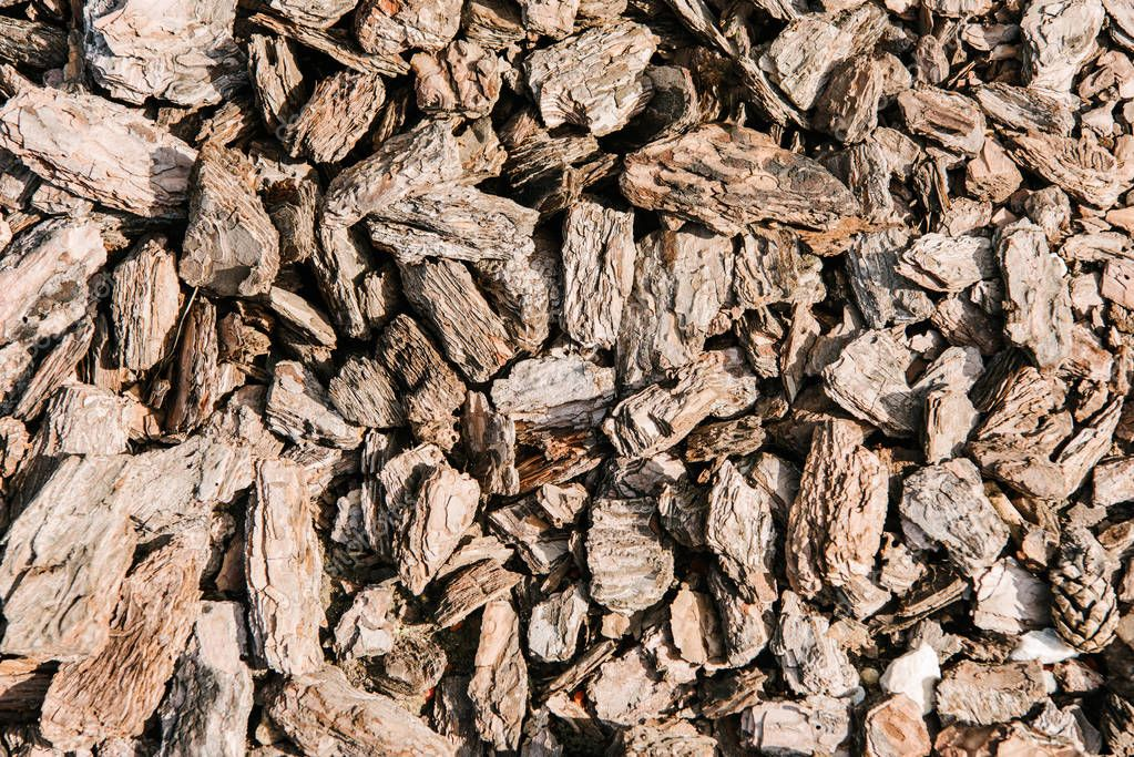 full frame shot of pieces of wooden bark for background
