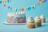 Ízletes cupcakes és torta, cukor hinti a kék háttér sármány