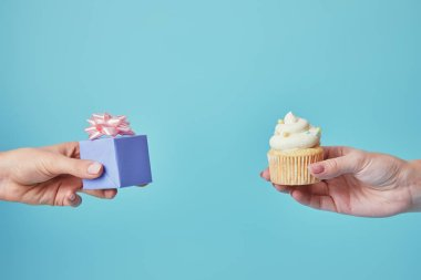 Partial voew of women holding delicious cupcake and gift on blue background