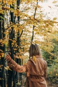 Photo Back view of woman walking in autumn forest and touching tree branch