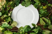 Photo top view of white plate and branches with leaves on wooden table