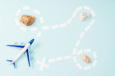 top view of toy plane, dotted line and seashells on blue background