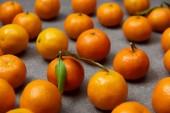 Selektivní fokus organických oranžové mandarinky se zelenými listy na šedý stůl