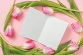 white blank greeting card with pink tulips arranged around on pink background