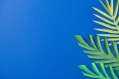 Photo top view of green paper cut exotic leaves on blue background with copy space