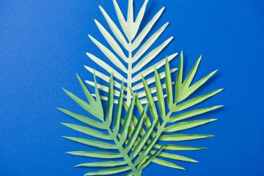 Top view of green paper cut exotic leaves on blue background stock vector