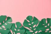 pohled na zelené palmové listy na růžovém pozadí s prostorem pro kopírování