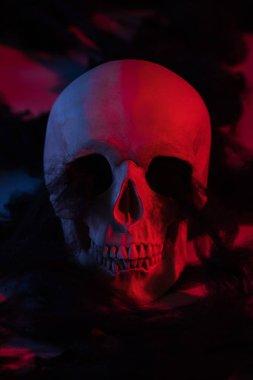 Spooky human skull in red lighting, Halloween decoration stock vector