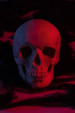 spooky human skull in red light, Halloween decoration