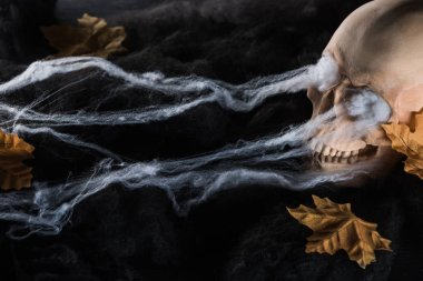 spooky human skull with yellow leaves in black clouds, Halloween decoration
