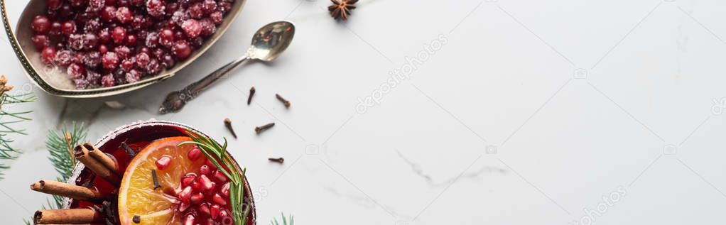 Panoramic shot of christmas cocktail with orange, pomegranate, cinnamon and frozen cranberry stock vector