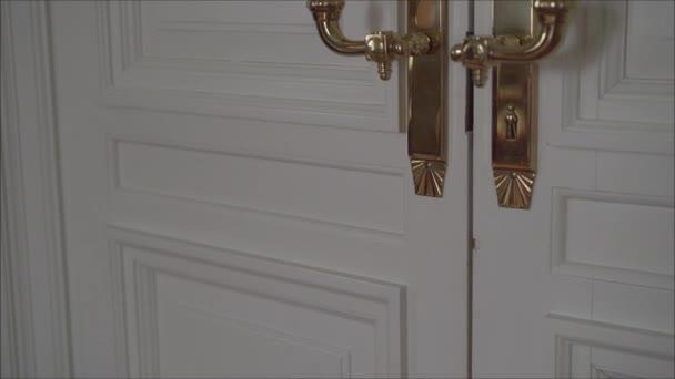 modern style door handle on white wooden door. Doors with gold handles