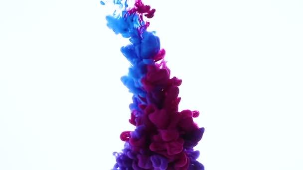 Couleur Bleu Rose Melanger Dans Eau Encre Agitant Sous Eau Video