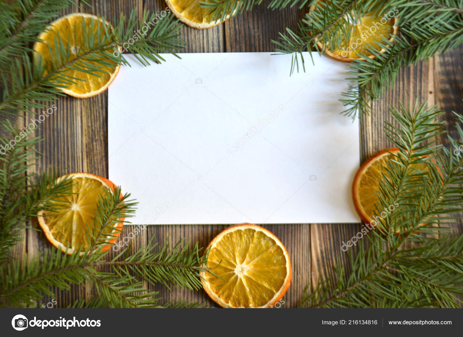 christmas and new year background pine branches and dried oranges photo by mvolkova