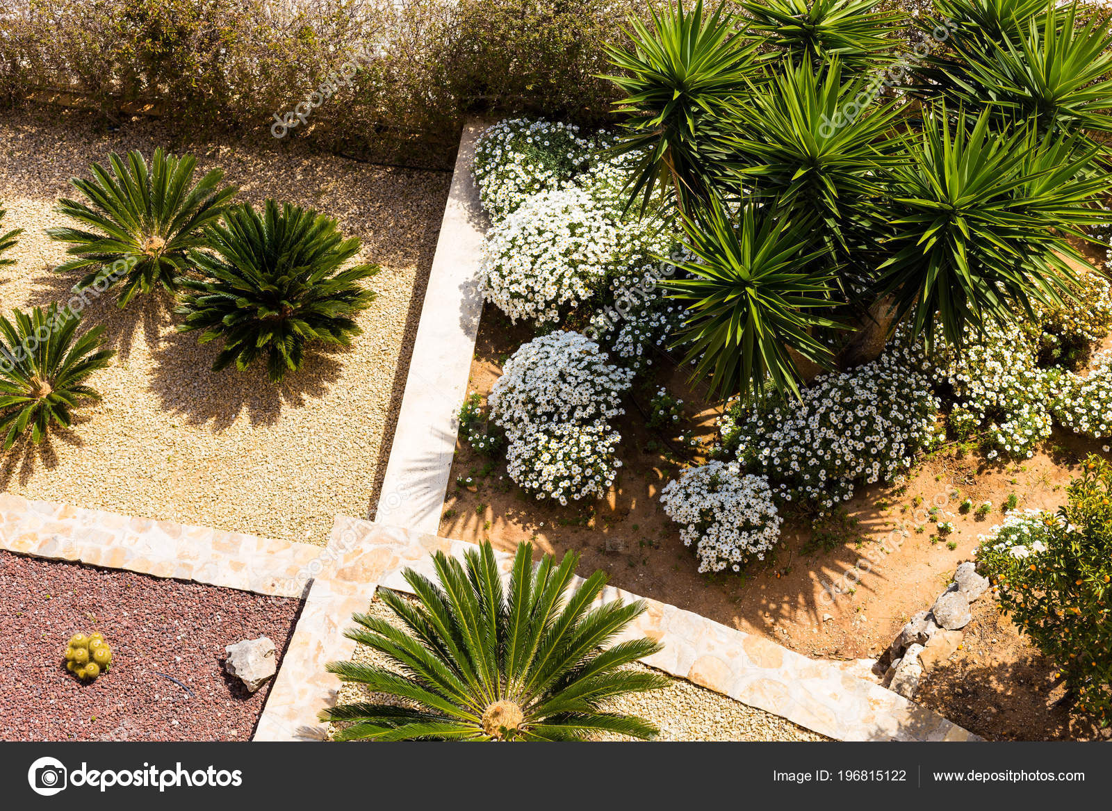 Landscape Design With Palm Trees And Flowers Top View Of The Modern Garden