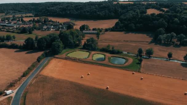 Letecký pohled na plodiny pšenice nebo žita pole s balíky sena, slámy stook. Tři malé jezera a řeky. Sklizeň zemědělské farmy venkovských letecká videa 4k