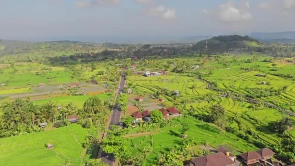 Aerial video in an amazing landscape, with drone, above rice terraces in a beautiful day. 4K