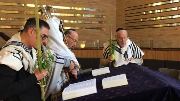 Zsidó férfi, kezében egy tóra-tekercs, és imádkozott zsinagóga, a zsidó ünnep fesztivál-Sukkoth (Hoshana Rabbah a hetedik és egyben utolsó napján).