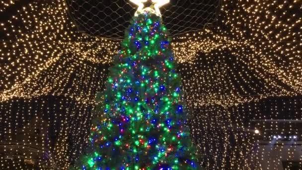 Vánoční strom rozsvícen s vánoční osvětlení a hvězda navrch.