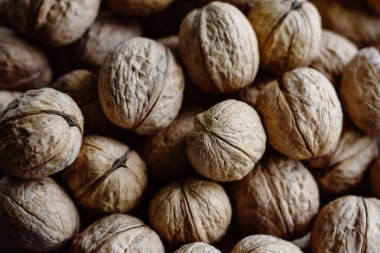 A lot of ripe nuts.