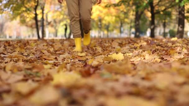 sok ősz arany levelek láb lány csizma