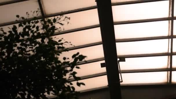 Pohled na stropní trámy a světlíky uvnitř místnosti velký skleník