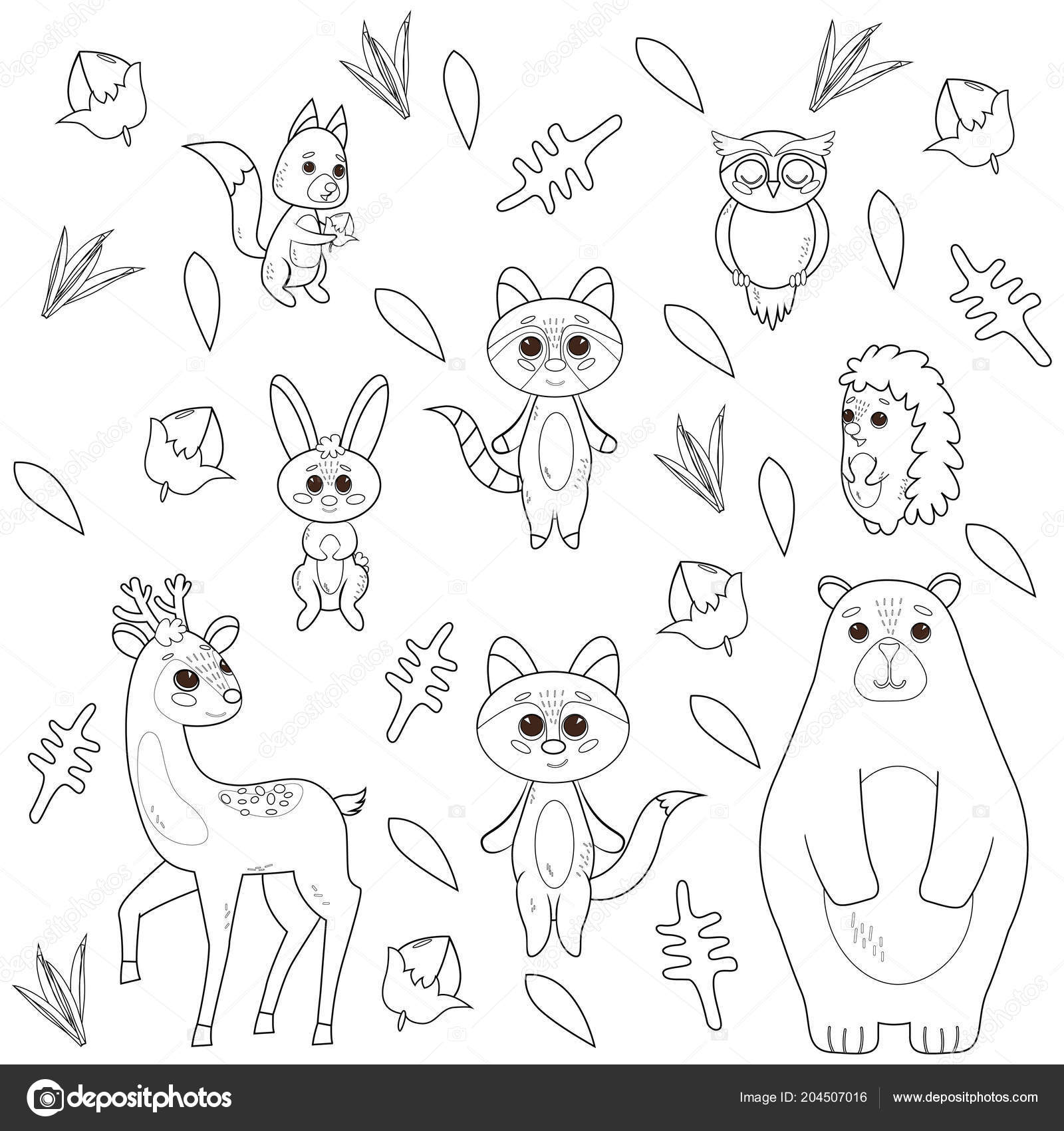 Coloring Book With Cute Forest Animals On The Floral Abstract